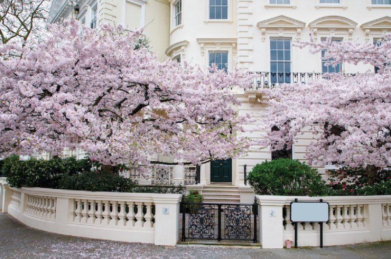 property management, london property, somerset estates